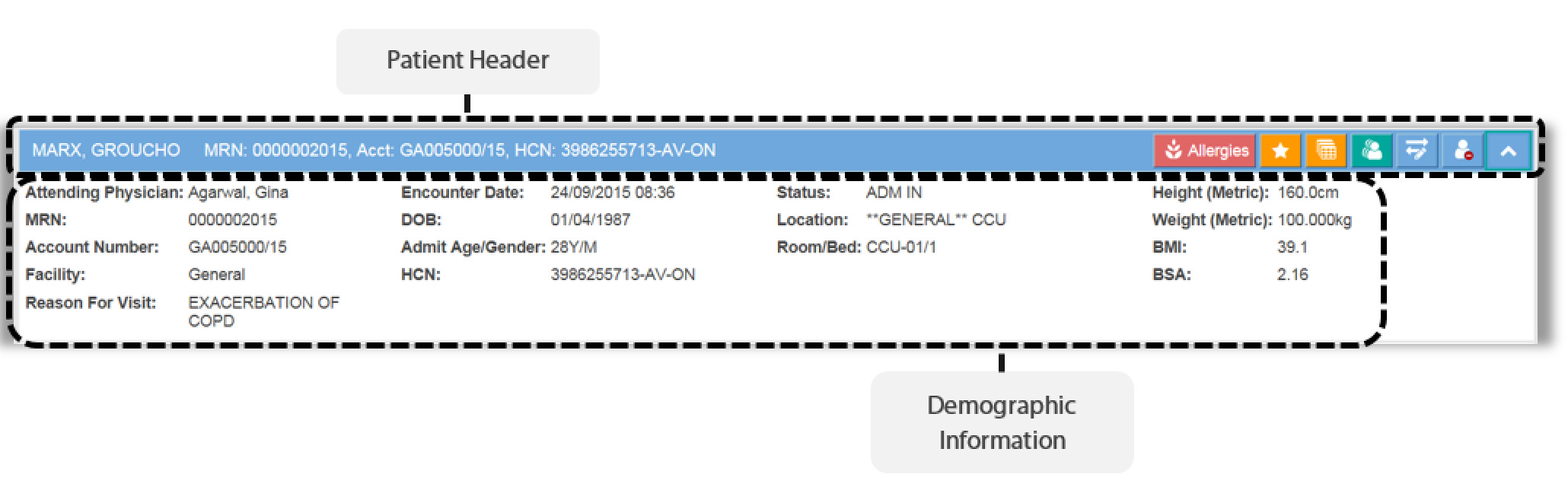 Image of the patient header and demographic information